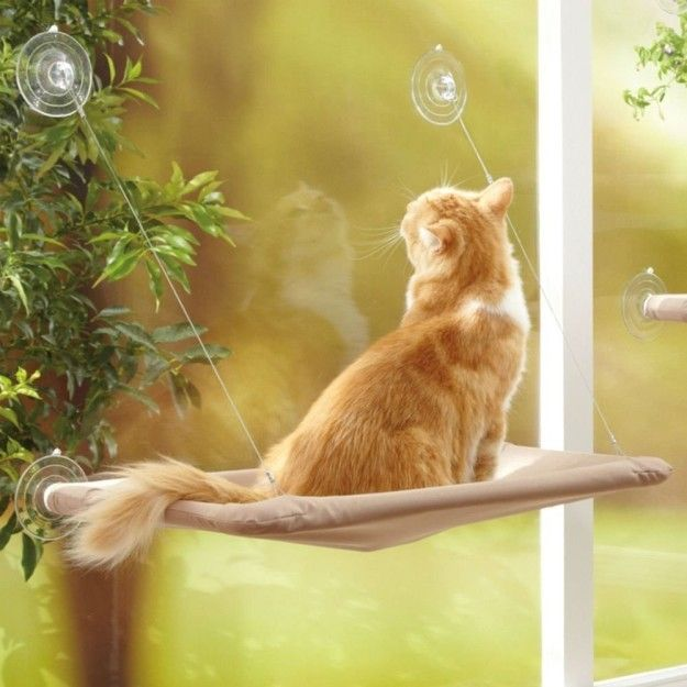 19 Products Your Cat Needs Other Than A Cardboard Box Cat Window Bed Cat Window Perch Cat Bed