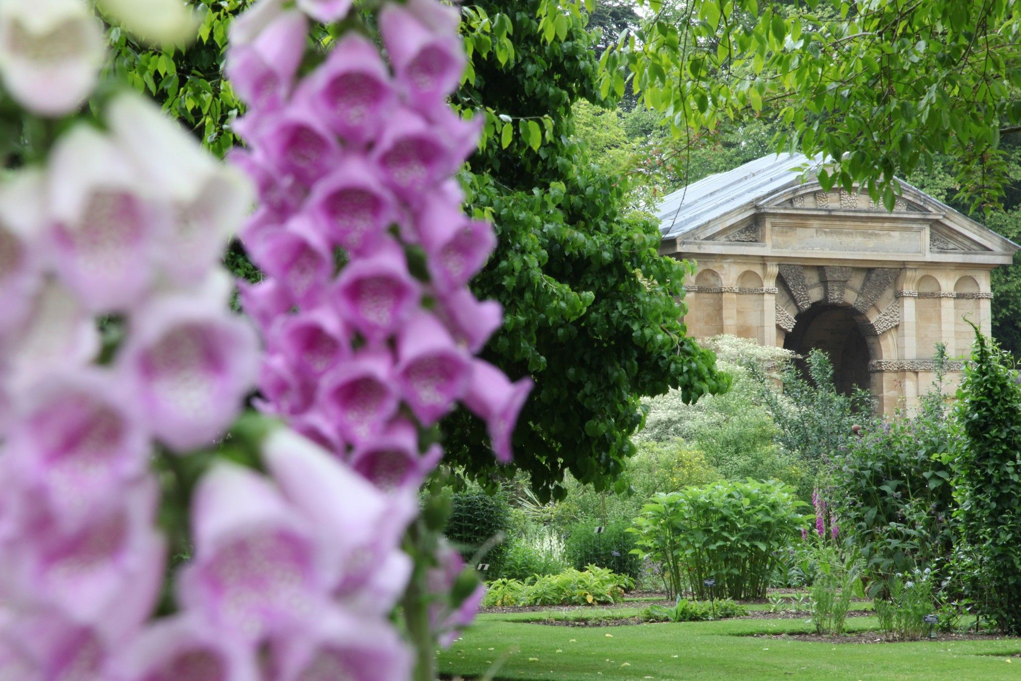 In Oxford, England, a botanical garden for both self-indulgence and self-improvement
