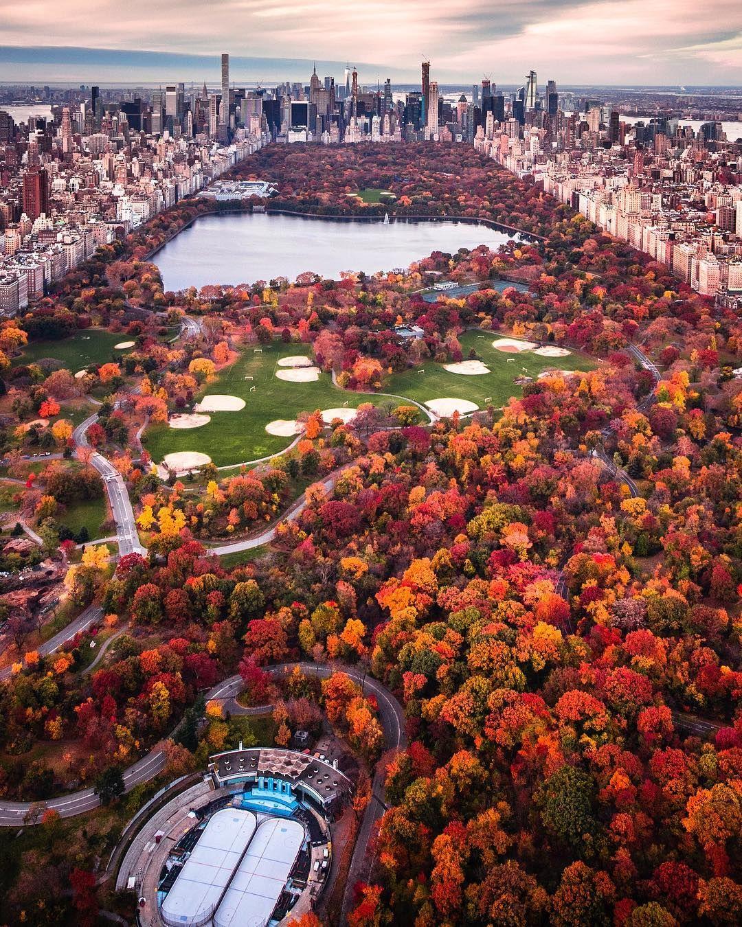 Central Park New York: Central Park New York [1080x1350]