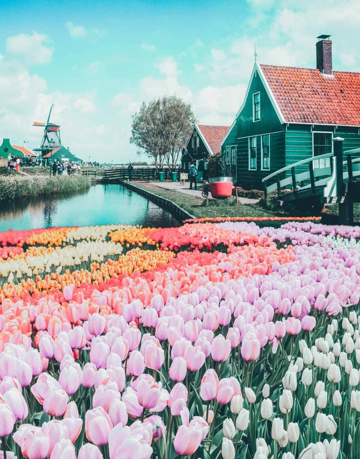 Top Things to do in the Netherlands #vacationdestinations