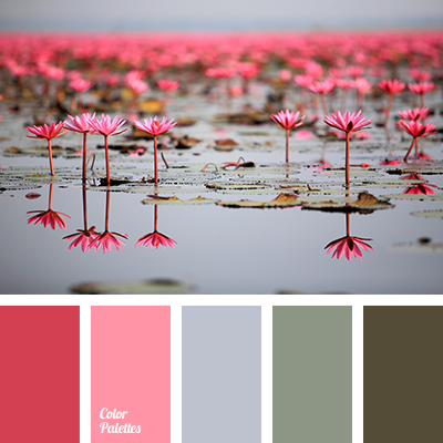 Bright Pink Color Of Marsh Color Solution For House