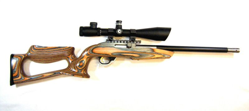 Ruger 10/22 .22LR with Magnum Research Barracuda Stock