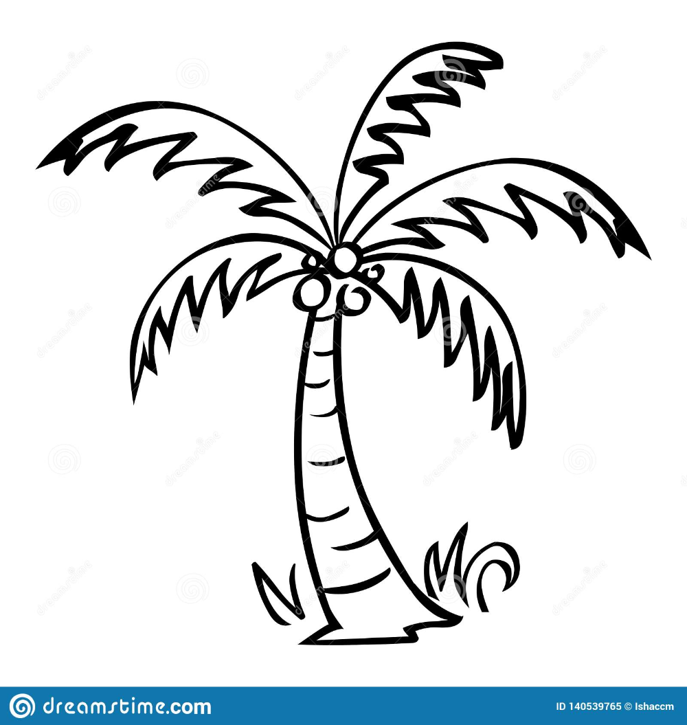 Illustration About Palm Tree Vector Black Line Art Isolated On White Background Illustration Of Leaf Drawing Palm Tree Drawing Tree Doodle Tree Illustration