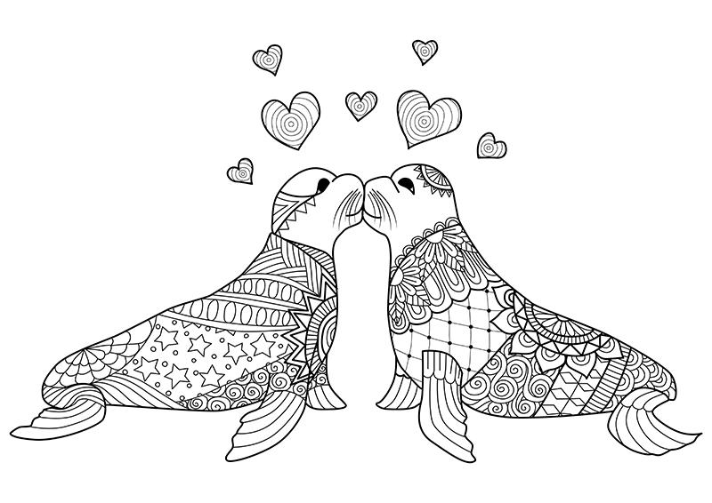 Download Or Print The Free Seals Kissing Love Coloring Page And Find Thousands Of Other Seals Kissing Malvorlagen Tiere Zeichenvorlagen Kostenlose Ausmalbilder
