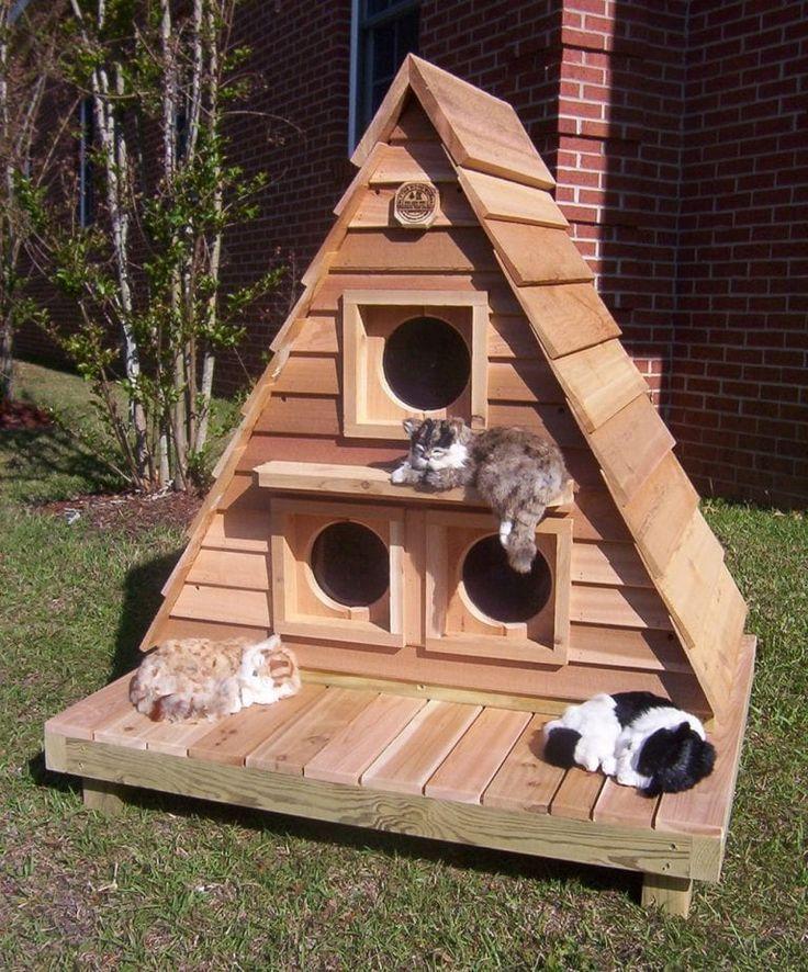Triplex Katzenhaus Cat House Diy Outside Cat House Cat House Plans