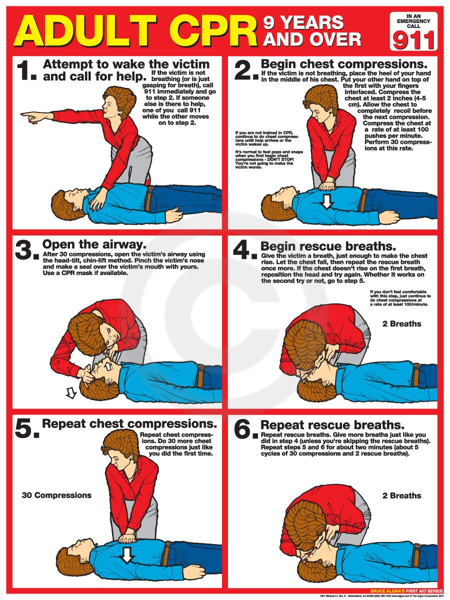 Adult CPR Poster - USA Labor Law Posters