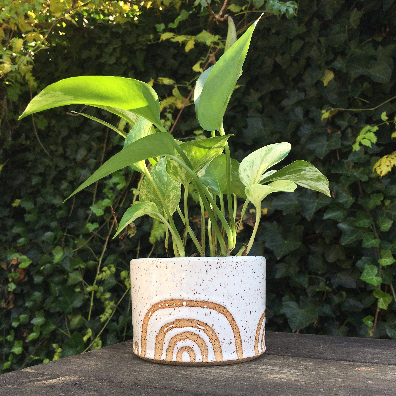 Ceramic Planter #ceramicplanter #handmadeceramic #handmadeclaypot #handmadeplanter