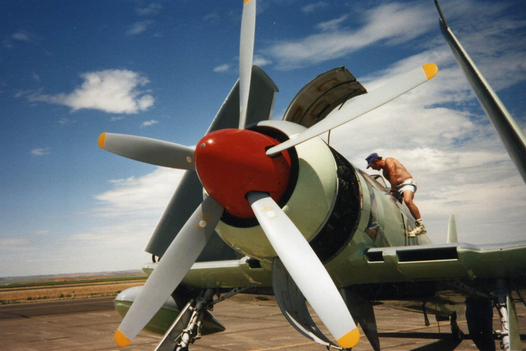 Hawker_Sea_Fury_by_DanaC.jpg (1702×1137)