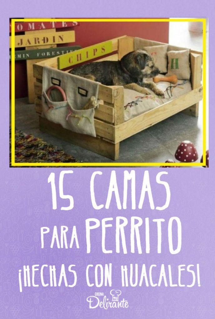 Photo of 15 camas para tu cachorro hechas con huacales