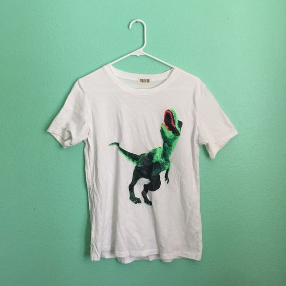 white tee with dinosaur never worn, no holes or stains! Tops
