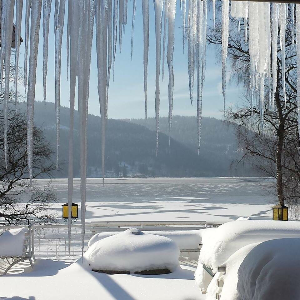 Winter Titisee Black Forest Germany Holiday La Maison Holiday Home Holiday Home Black Forest Around The Worlds