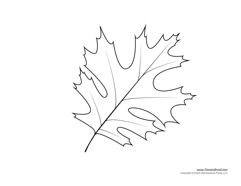 Printable Leaf Paper Ukrandiffusion