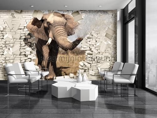 Kleur Mijn Interieur : Elephant break out fotobehang ve m dieren kleurmijninterieur