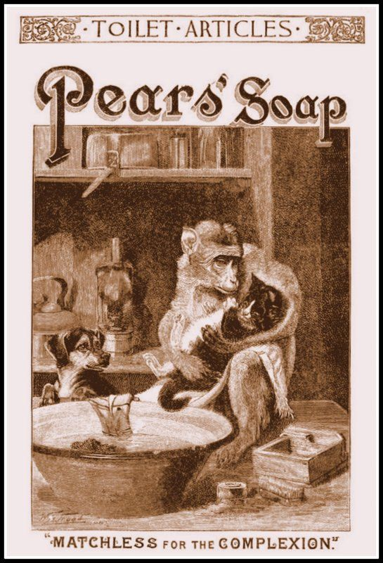 Bathroom Art Pears Soap Advert Poster Print By BloominLuvly