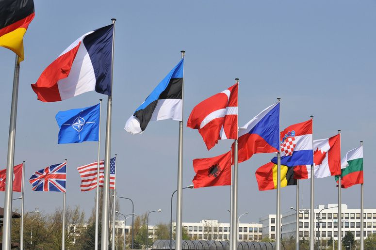Flags Of The 28 Nato Member Countries In 1949 There Were 12 Founding Members Of The Alliance North Atlantic Tre With Images Countries Europe Country Flags Veteran Jobs