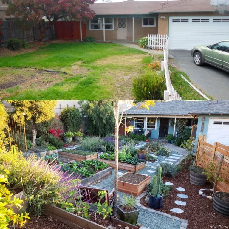 Homestead Gardens Landscaping: Our Homestead (With Images)