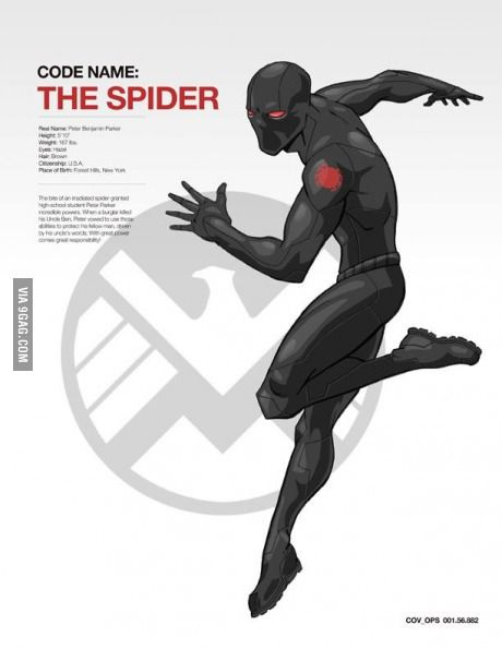 What if Spider-Man had become a shield agent instead of a super-hero ? Well here it's the answer.