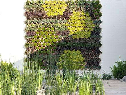The low-tech living wall, made by planting drought-tolerant ...