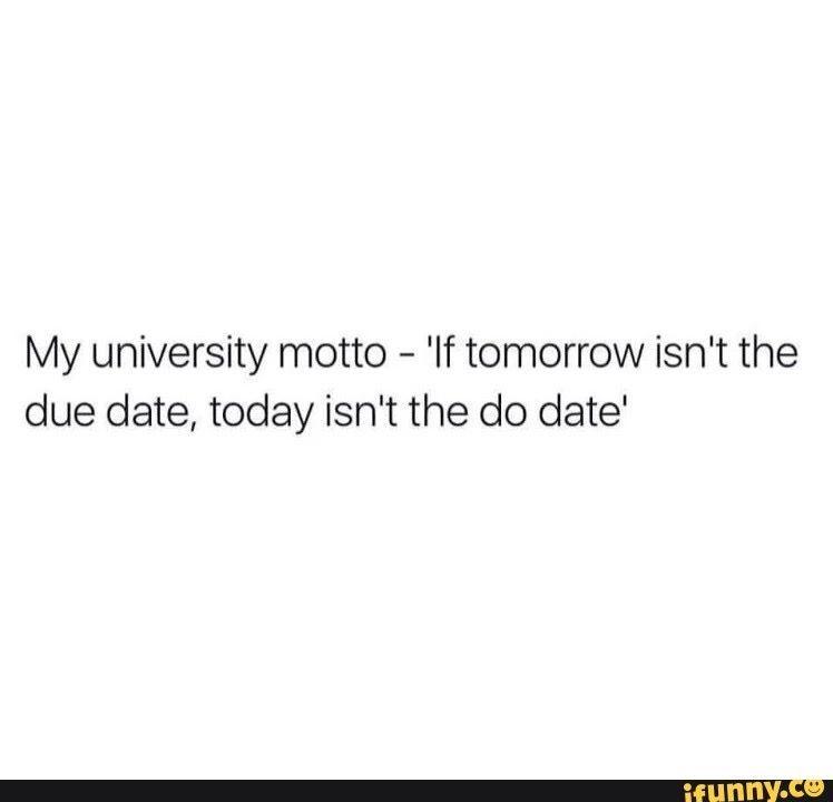 Procrastination At Its Finest College Quotes Senior Quotes