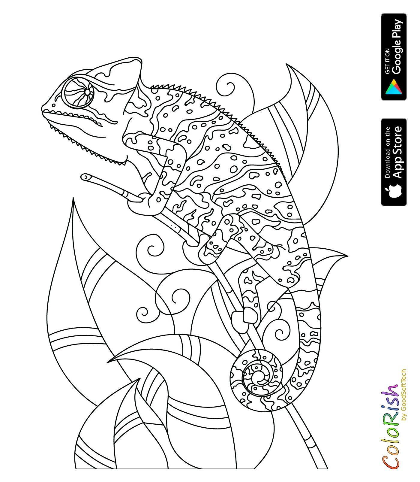 Ausgezeichnet Reptilien Malvorlagen Fotos - Ideen fortsetzen ...