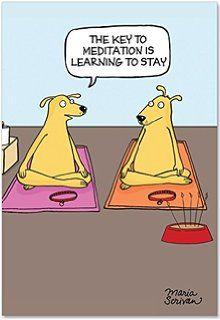Yoga Dog Birthday Google Search Funny Birthday Cards Birthday Cards Birthday Humor