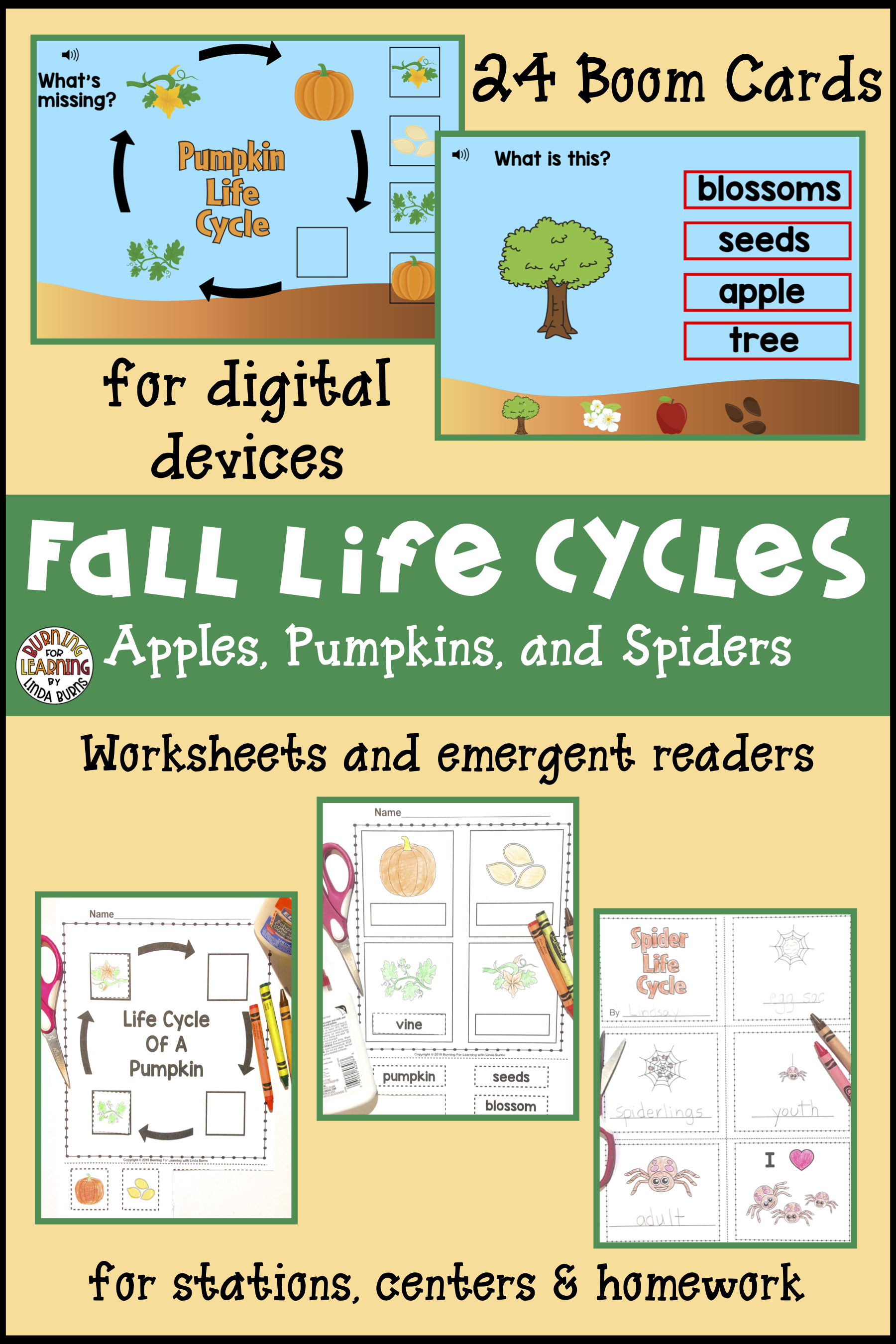 Life Cycles Of Apples Spiders And Pumpkins
