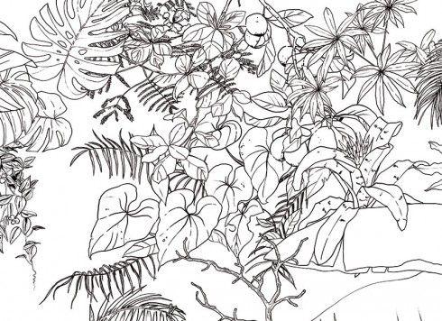 Papier Peint Jungle Tropical Noir Et Blanc Big Panoramique Papier