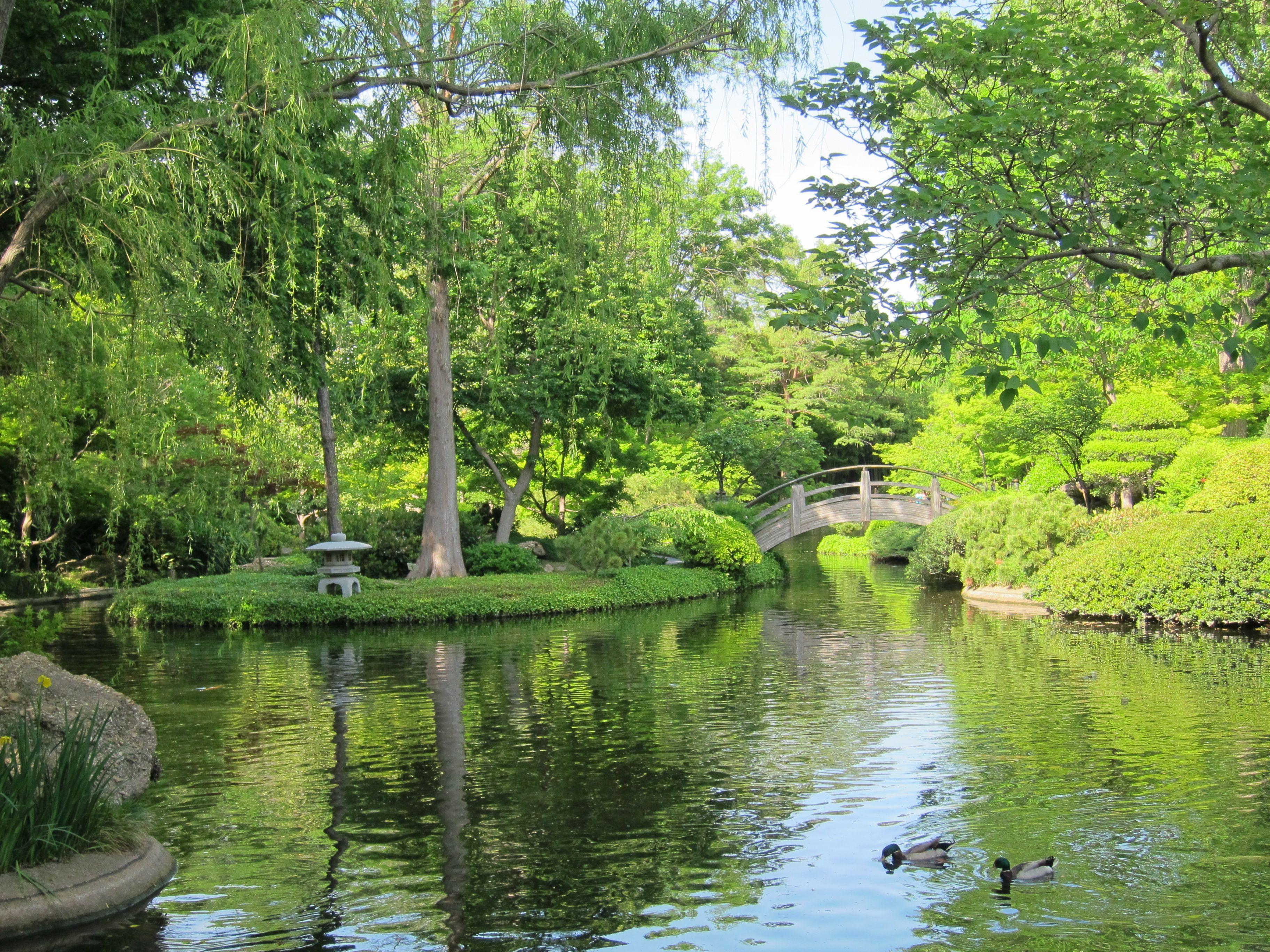 Botanic Garden, Fort Worth, Texas (Japanese garden