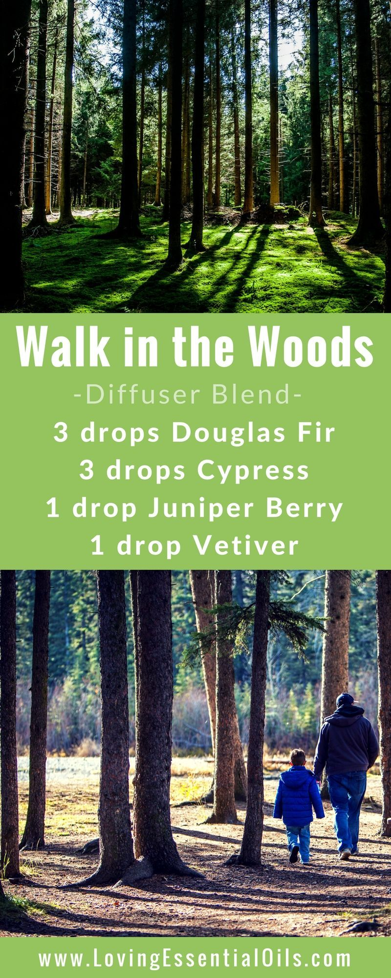 FREE GUIDE: 150 Essential Oil Diffuser Recipes You Will Love - Walk in the Woods diffuser blend with douglas fir cypress juniper berry and vetiver essential oils happy diffusing! #diffuserguide #diffusingoils #diffuserblends #winterdiffuserblends