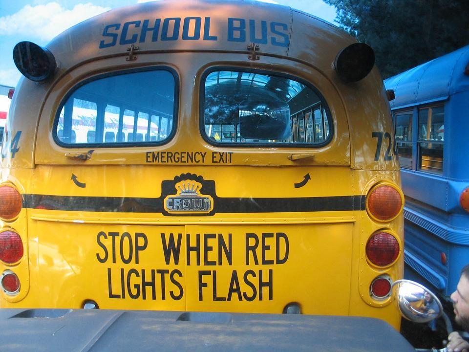 Schoolbusenthusiast Com