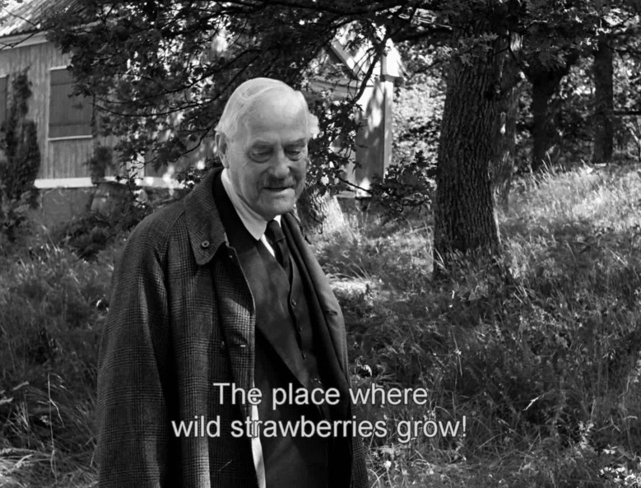 Smultronstället (Wild Strawberries) Ingmar Bergman