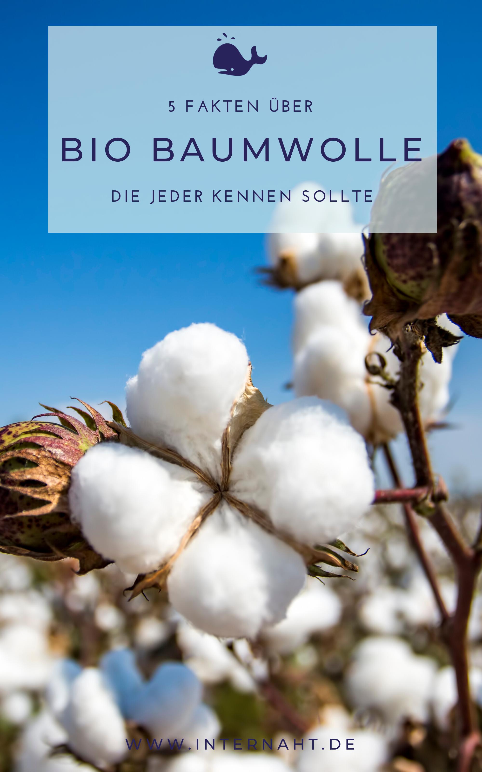 5 Fakten über Bio Baumwolle  #Baumwolle #Bio #Fakten #Über