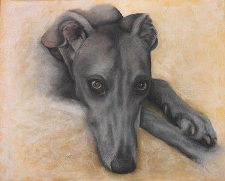 Beautiful Grey Girl Galgo Dibujos De Perros Pinturas