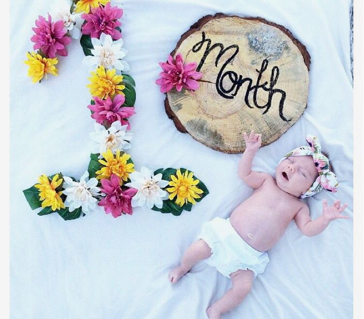 Baby Monthly Milestone Pictures Baby Girl Newborn Pictures Milestone Pictures Baby Month By Month