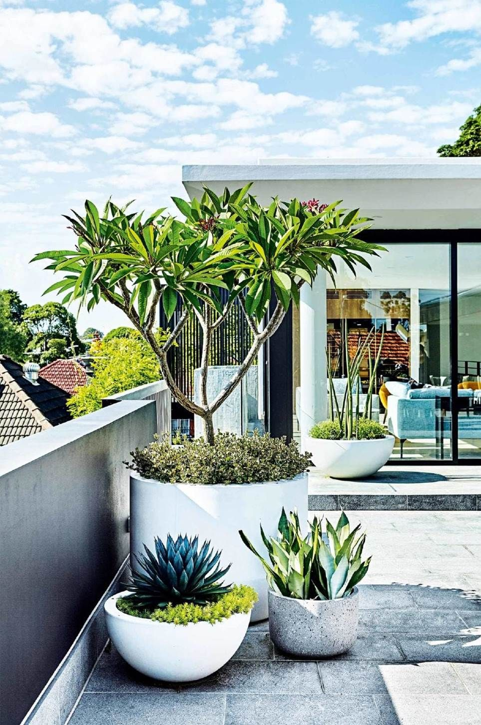This Rooftop Terrace Features A Low Maintenance Garden With