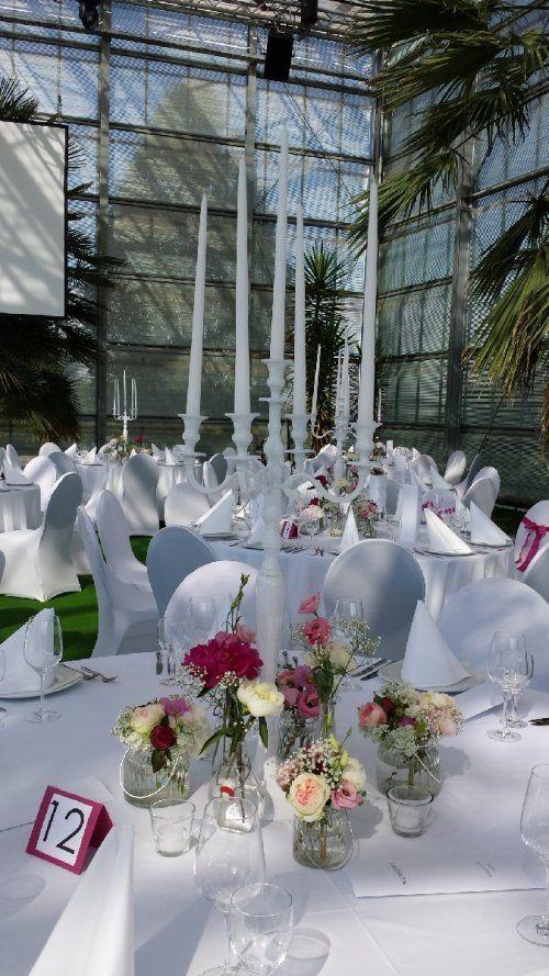 FLORICA  FLORICA Blumen Kln fr Hochzeit Hochzeitsdekorationen Sonstiges  FLORICA