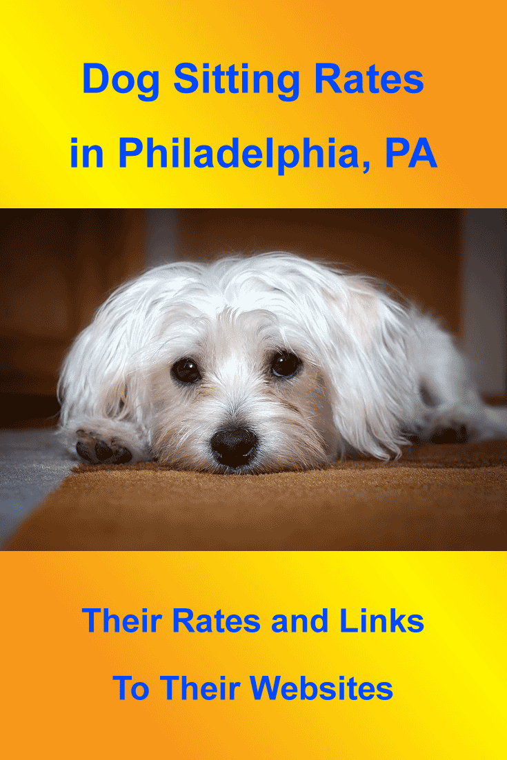 Dog Sitting Rates For Companies Servicing Philadelphia Pa With Images Dog Sitting Rates Dog Sitting Dogs