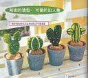 kaktusy - 7Kasiulek7 - Picasa Web Albums