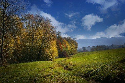 Autumn, View, Colors
