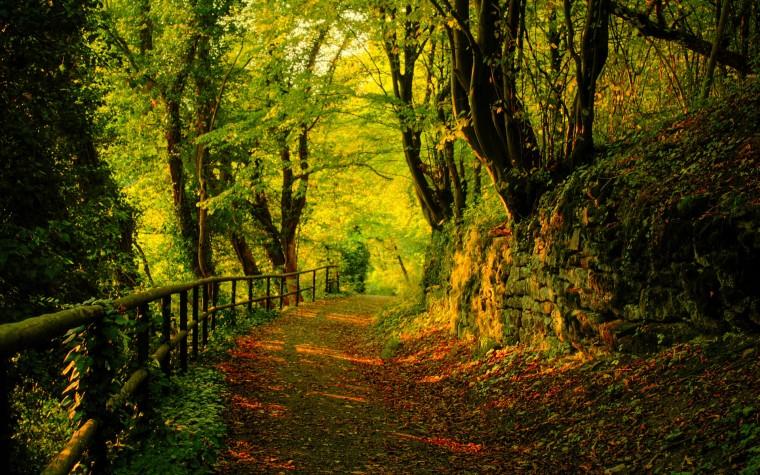 Hd Fall Wallpaper For Desktop Nature Desktop Wallpaper Hd Landscape Fall Wallpaper