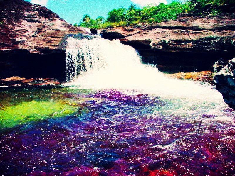 Caño Cristales, Colombia!