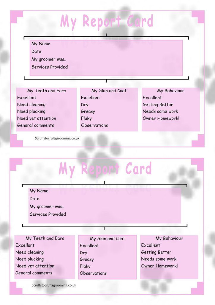 Client Report Card  Pink  Dog Grooming    Grooming