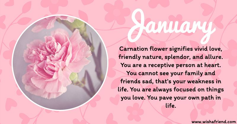 January Birth Flower Birth Flowers January Birth Flowers Birth Month Flowers