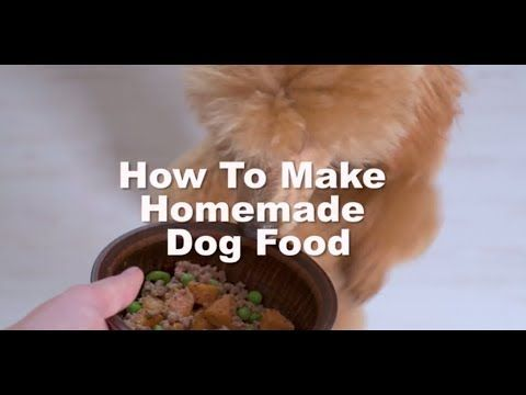 How To Make Homemade Dog Food Dog Food Recipes Homemade Dog