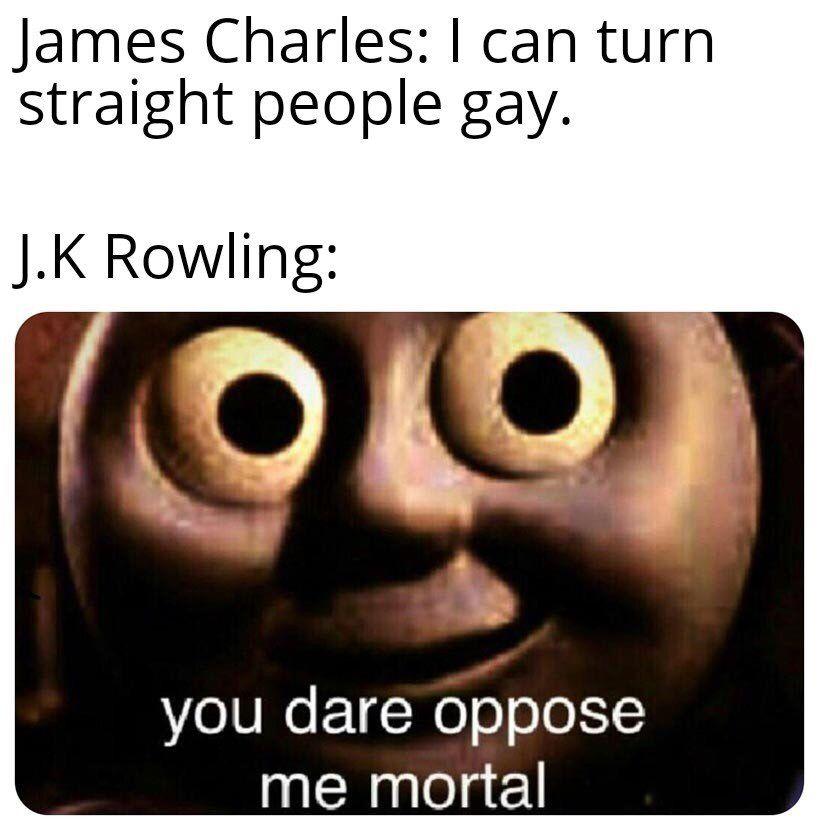 Pin By Jorge On Harry Potter Funny Memes Memes Mortal Kombat Memes