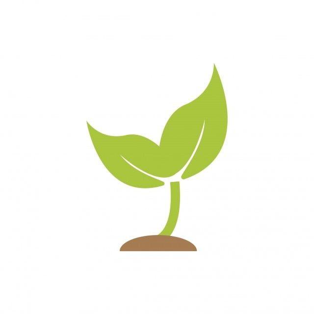Gambar Sprout Tumbuhan Grafik Ikon Bentuk Template Tanam Clipart Ikon Tumbuhan Ikon Templat Png Dan Vektor Untuk Muat Turun Percuma In 2021 Icon Design Plant Icon Vector Icon Design