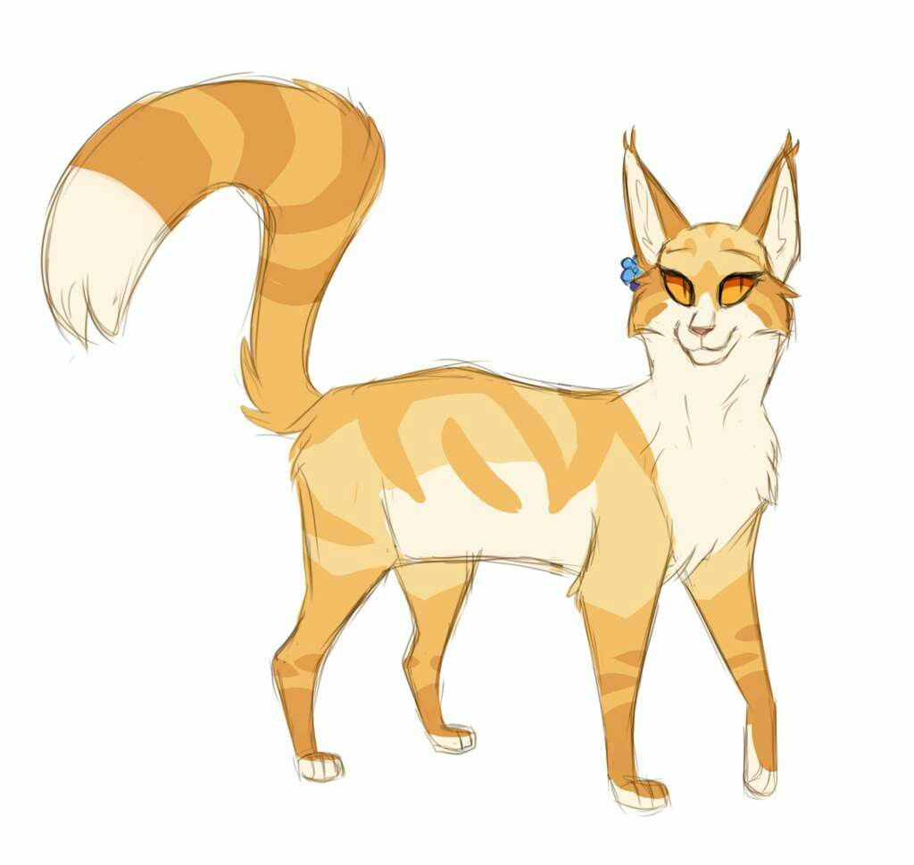 Mothwing She Cat With Images Warrior Cats Art Warrior Cat