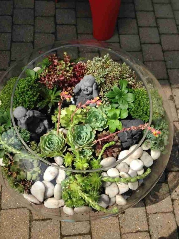 Sukkulenten Zimmerpflanzen sukkulenten im glas im blickfang kreative deko ideen mit pflanzen