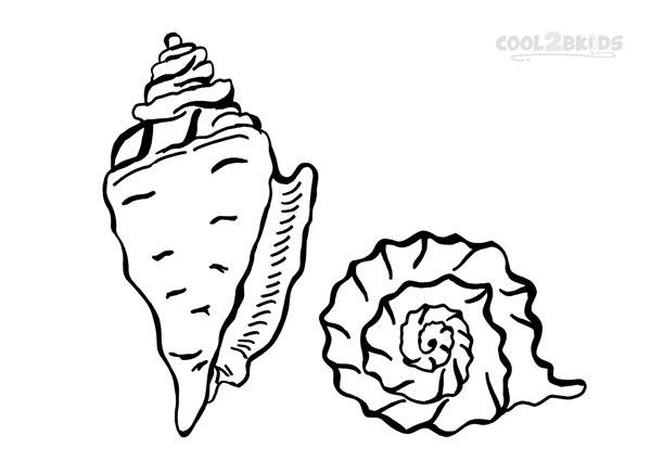 Printable Seashell Coloring Pages For Kids Cool2bKids DIY - best of coloring pages for shapes and colors