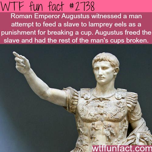 The Roman Empire: Augustus and the Principate Period
